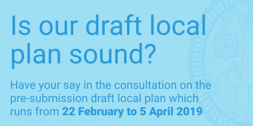 Draft local plan 2019