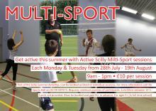 Multi-Sport Poster